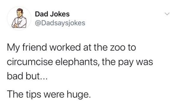 Text - Dad Jokes @Dadsaysjokes My friend worked at the zoo to circumcise elephants, the pay was bad but... The tips were huge.