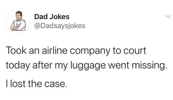 Text - Dad Jokes @Dadsaysjokes Took an airline company to court today after my luggage went missing. I lost the case.