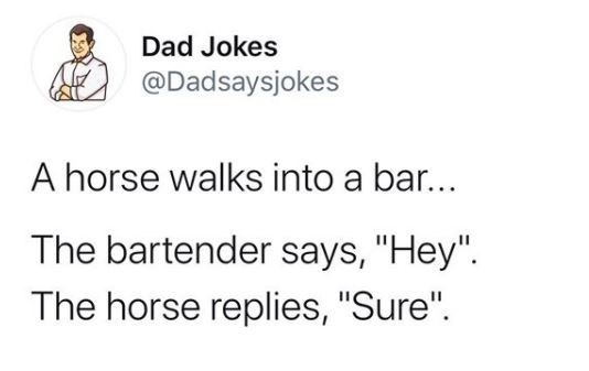 """Text - Dad Jokes @Dadsaysjokes A horse walks into a bar... The bartender says, """"Hey"""". The horse replies, """"Sure""""."""