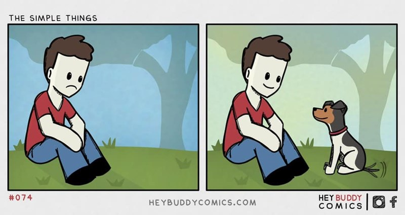 Cartoon - THE SIMPLE THINGS #074 HEY BUDDY COMICS Of HEYBUDDYCOMICS.COM