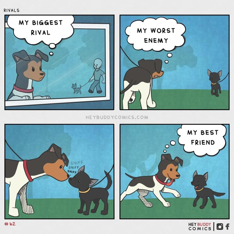 Cartoon - RIVALS MY BIGGEST RIVAL MY WORST ENEMY HEYBUDDYCOMICS.COM MY BEST FRIEND SNIFF SNIFF SNIFF # 62 HEY BUDDY COMICS