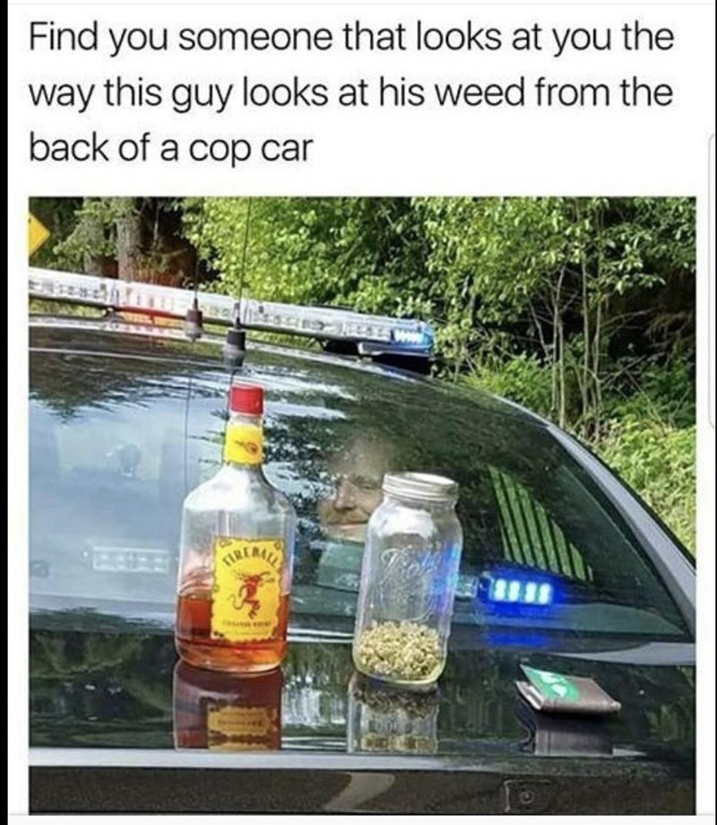 Alcohol - Find you someone that looks at you the way this guy looks at his weed from the back of a cop car