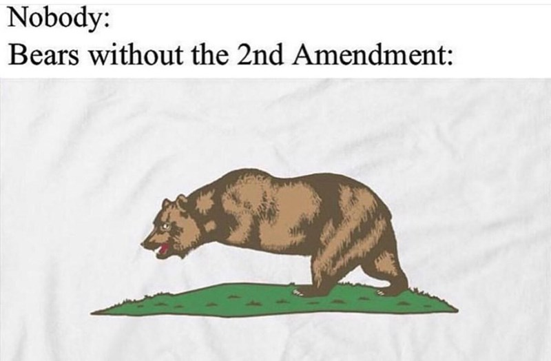 Tapir - Nobody: Bears without the 2nd Amendment: