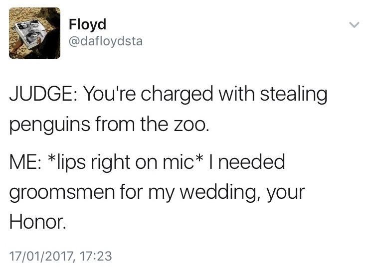 Text - Floyd @dafloydsta JUDGE: You're charged with stealing penguins from the zoo. ME: *lips right on mic* I needed groomsmen for my wedding, your Honor. 17/01/2017, 17:23