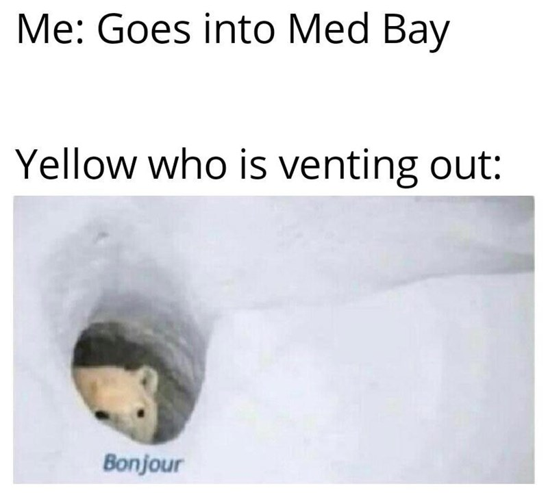 Text - Me: Goes into Med Bay Yellow who is venting out: Bonjour