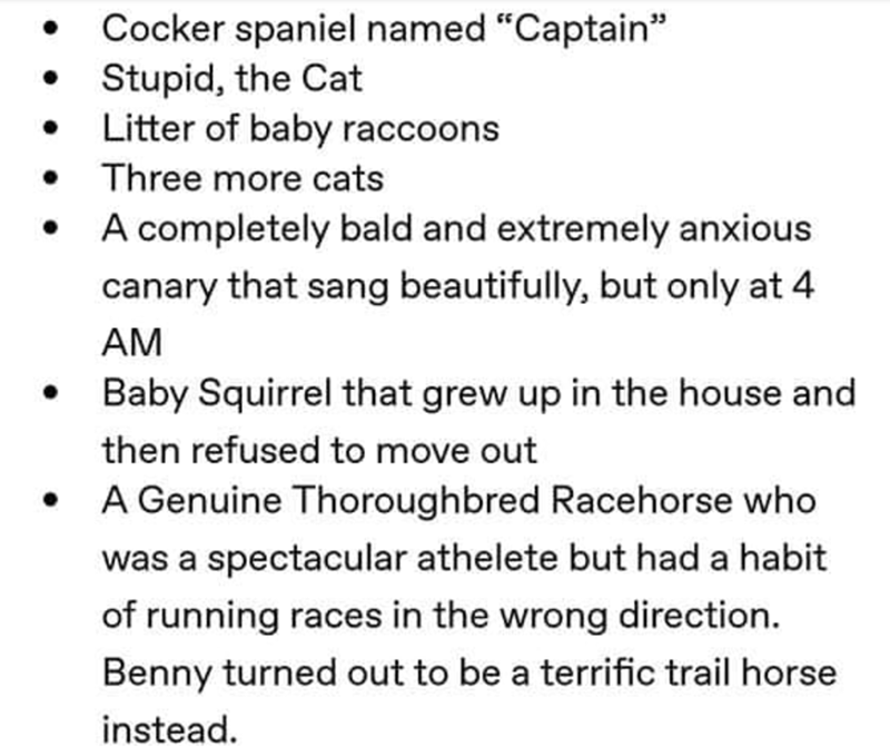 """Text - Cocker spaniel named """"Captain"""" Stupid, the Cat Litter of baby raccoons Three more cats A completely bald and extremely anxious canary that sang beautifully, but only at 4 AM Baby Squirrel that grew up in the house and then refused to move out A Genuine Thoroughbred Racehorse who was a spectacular athelete but had a habit of running races in the wrong direction. Benny turned out to be a terrific trail horse instead."""