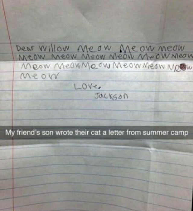 Text - Dear Willow Meow Me ow meaw Meow Meow Meow Meow MeOWMeon Meow MeoWMeow Meow Meow MOw Meow LOve, Jackson My friend's son wrote their cat a letter from summer camp
