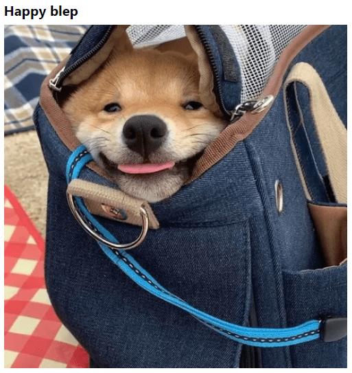 Dog - Наpрy blep