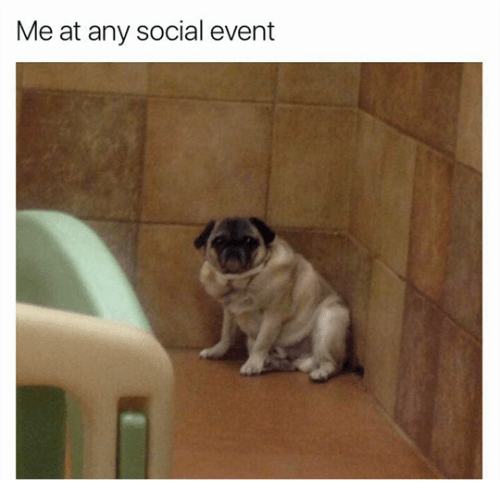 Pug - Me at any social event