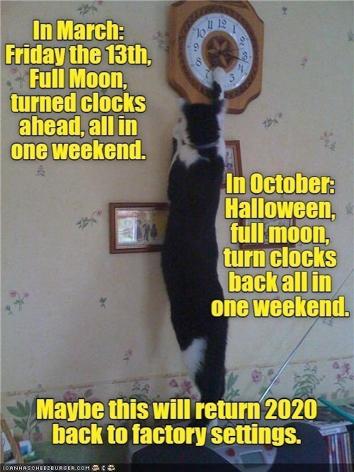 Photo caption - In March: Friday the 13th, Full Moon, turned clocks ahead, all in one weekend. I1 12 6. 3. In October: Halloween, full moon, turn clocks back all in one weekend. Maybe this will return 2020 back to factory settings. ICANHASCHEEZEURGER.COM C