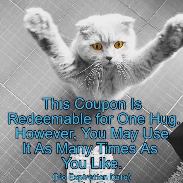 Cat - This Coupon Is Redeemable for One Hug. However, You May Use It As Many Times As You Like. (No Expiration Date)