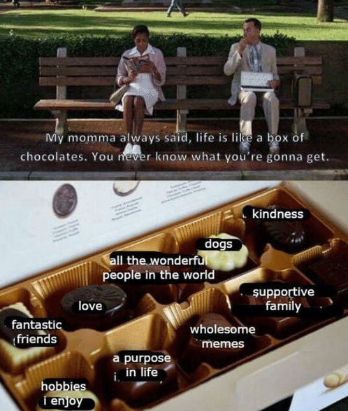 Advertising - My momma always said, life is like a box of chocolates. You never know what you're gonna get. kindness dogs all the wonderful people in the world şupportive family love fantastic friends wholesome memes a purpose i, in life hobbies i enjoy