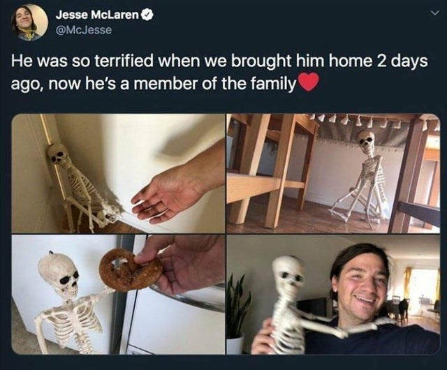 Funny tweet about a skeleton coming home, being scared, warming up to family, as though the skeleton is a pet | Jesse McLaren @McJesse He was so terrified when we brought him home 2 days ago, now he's a member of the family