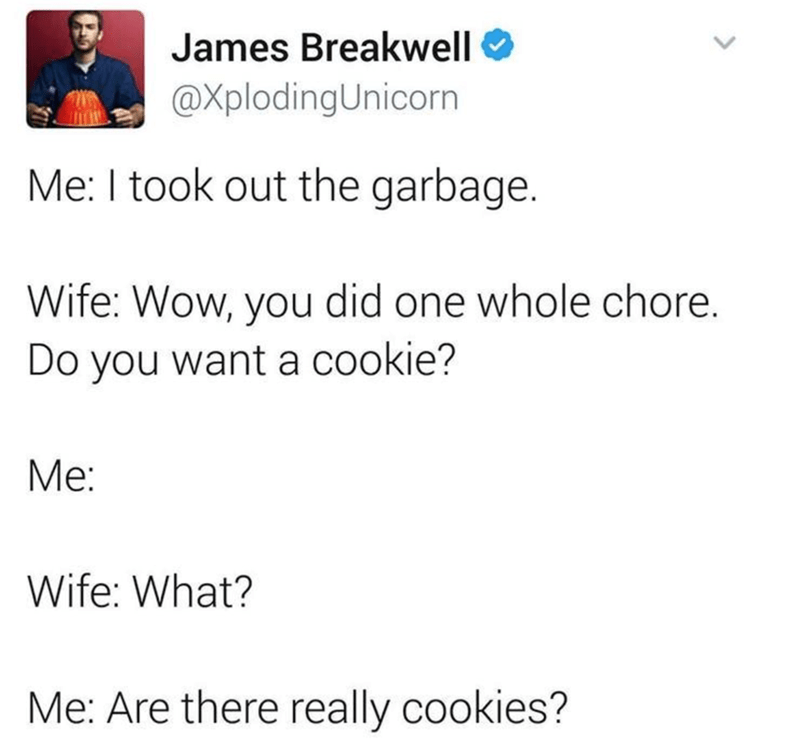 Text - James Breakwell @XplodingUnicorn Me: I took out the garbage. Wife: Wow, you did one whole chore. Do you want a cookie? Me: Wife: What? Me: Are there really cookies?