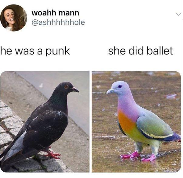 Bird - woahh mann @ashhhhhhole he was a punk she did ballet