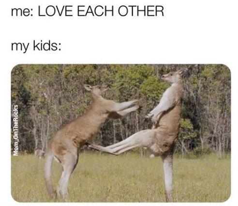 kangaroo - me: LOVE EACH OTHER my kids: Mom onTheRocks