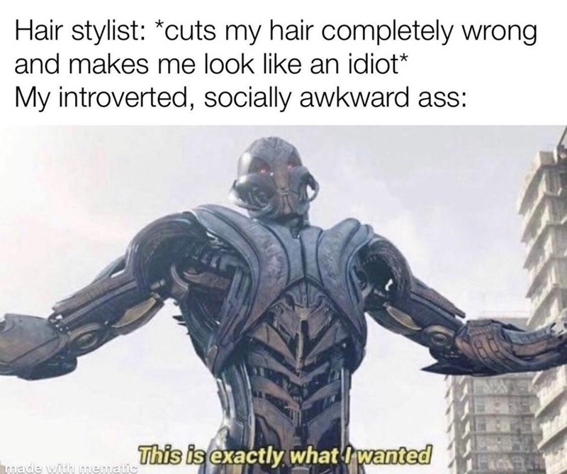 Human - Hair stylist: *cuts my hair completely wrong and makes me look like an idiot* My introverted, socially awkward ass: This is exactly what Iwanted made with mematic