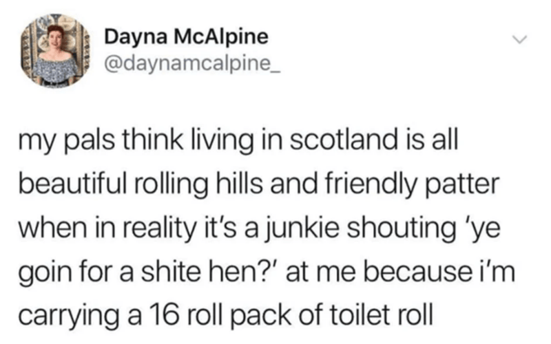 Text - Dayna McAlpine @daynamcalpine_ my pals think living in scotland is ll beautiful rolling hills and friendly patter when in reality it's a junkie shouting 'ye goin for a shite hen?' at me because i'm carrying a 16 roll pack of toilet roll