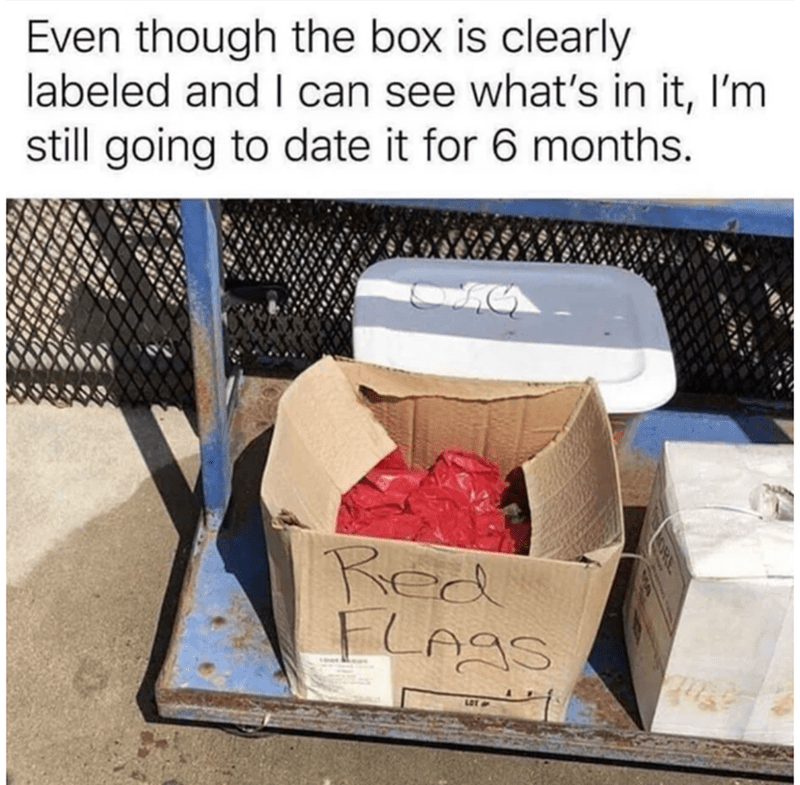 Box - Even though the box is clearly labeled and I can see what's in it, I'm still going to date it for 6 months. Red FLAGS LOT