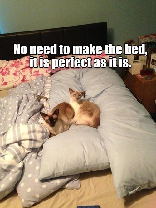 Comfort - No need to make the bed, it is perfect as it is.