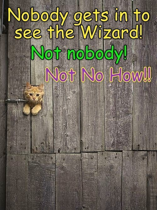 Text - Nobody gets in to see the Wizard! Not nobody! Not No How!l