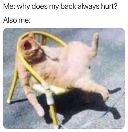 Goats - Me: why does my back always hurt? Also me: