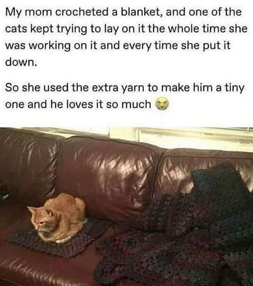 Text - My mom crocheted a blanket, and one of the cats kept trying to lay on it the whole time she was working on it and every time she put it down. So she used the extra yarn to make him a tiny one and he loves it so much