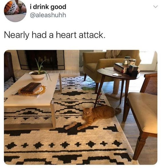Floor - i drink good @aleashuhh Nearly had a heart attack. >