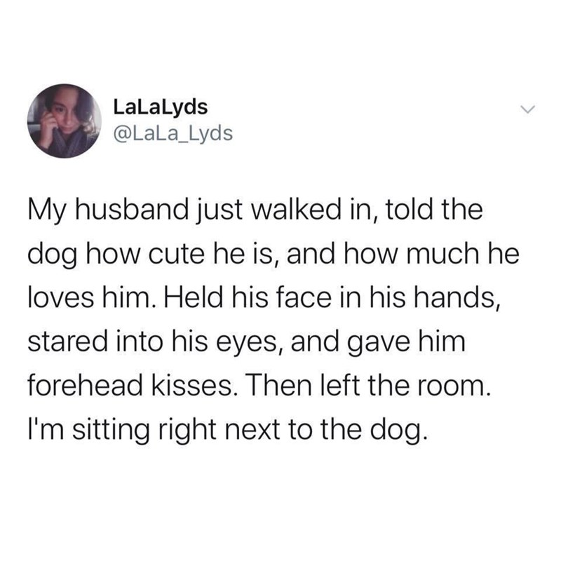 Text - LaLalyds @LaLa_Lyds My husband just walked in, told the dog how cute he is, and how much he loves him. Held his face in his hands, stared into his eyes, and gave him forehead kisses. Then left the room. I'm sitting right next to the dog.