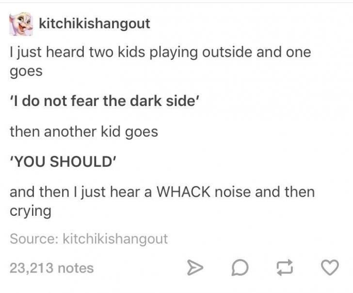 Text - kitchikishangout I just heard two kids playing outside and one goes 'I do not fear the dark side' then another kid goes 'YOU SHOULD' and then I just hear a WHACK noise and then crying Source: kitchikishangout 23,213 notes