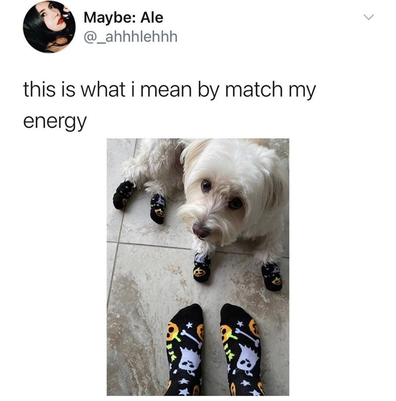 Dog - Maybe: Ale @_ahhhlehhh this is what i mean by match my energy