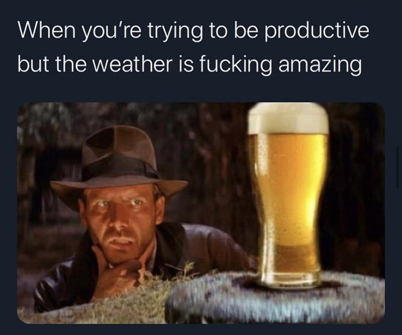 Beer - When you're trying to be productive but the weather is fucking amazing