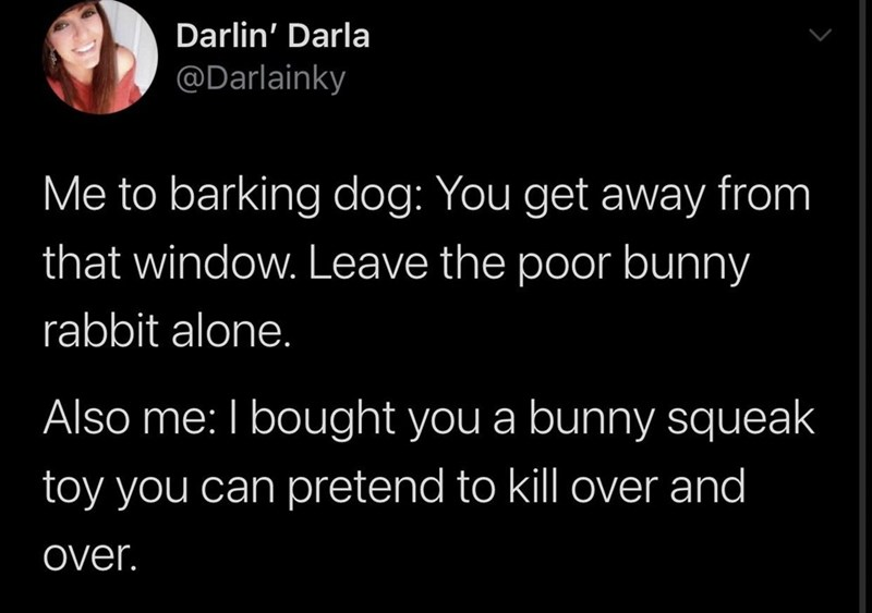 Text - Darlin' Darla @Darlainky Me to barking dog: You get away from that window. Leave the poor bunny rabbit alone. Also me: I bought you a bunny squeak toy you can pretend to kill over and over.