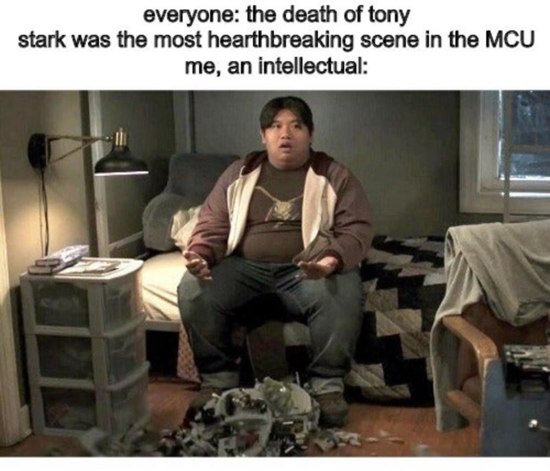 Human - everyone: the death of tony stark was the most hearthbreaking scene in the MCU me, an intellectual: