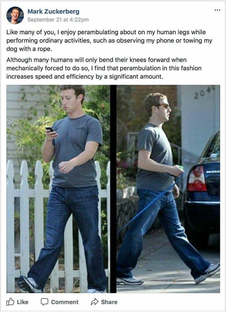 Jeans - Mark Zuckerberg ... September 21 at 4:22pm Like many of you, I enjoy perambulating about on my human legs while performing ordinary activities, such as observing my phone or towing my dog with a rope. Although many humans will only bend their knees forward when mechanically forced to do so, I find that perambulation in this fashion increases speed and efficiency by a significant amount. 2046 PASSA O Like Comment A Share