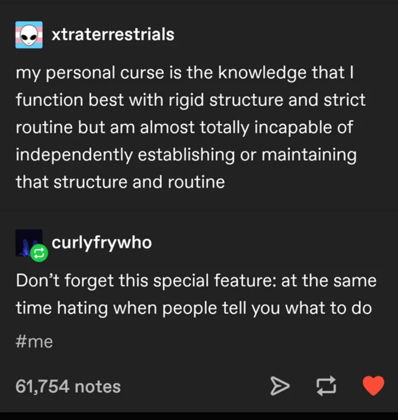 Text - xtraterrestrials my personal curse is the knowledge that I function best with rigid structure and strict routine but am almost totally incapable of independently establishing or maintaining that structure and routine curlyfrywho Don't forget this special feature: at the same time hating when people tell you what to do #me 61,754 notes