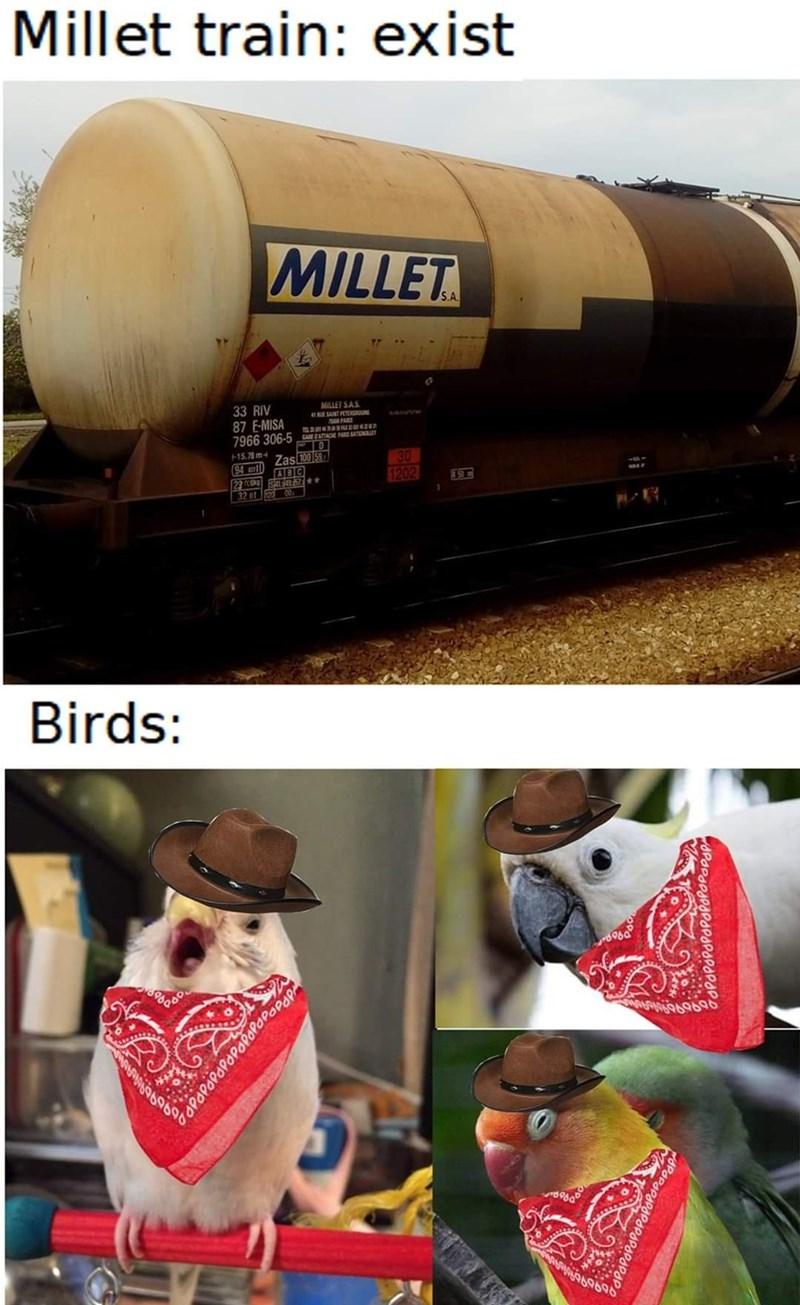 Transport - Millet train: exist MILLET S.A MILLET SAS 33 RIV 87 E-MISA 7966 306-5 AAOE Ao PARS +15.79m-4 Zas 100 5 ABC 30 1202 94 ml) 32 et 00 ,駅 Birds: