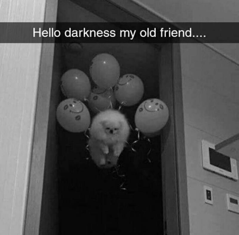 Room - Hello darkness my old friend....