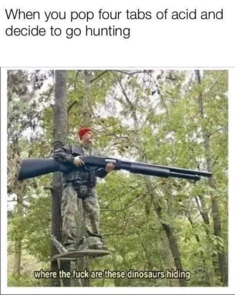 Gun - When you pop four tabs of acid and decide to go hunting where the fuck are these dinosaurs hiding