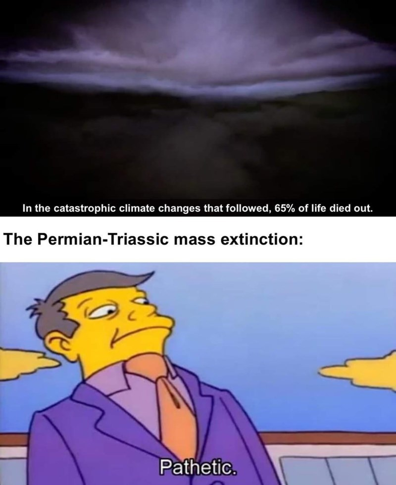 Cartoon - In the catastrophic climate changes that followed, 65% of life died out. The Permian-Triassic mass extinction: Pathetic.