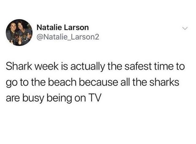 Text - Natalie Larson @Natalie_Larson2 Shark week is actually the safest time to go to the beach because all the sharks are busy being on TV >