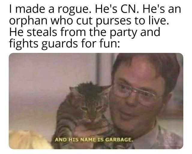 Text - I made a rogue. He's CN. He's an orphan who cut purses to live. He steals from the party and fights guards for fun: AND HIS NAME IS GARBAGE.