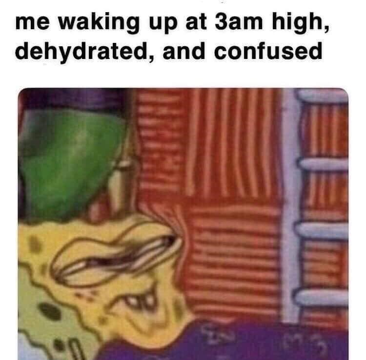 Text - me waking up at 3am high, dehydrated, and confused