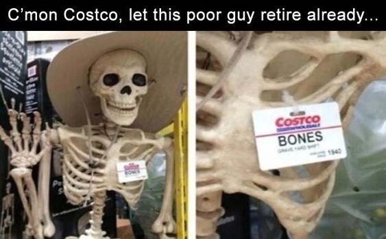 Skeleton - C'mon Costco, let this poor guy retire already... COSTCO BONES 1540