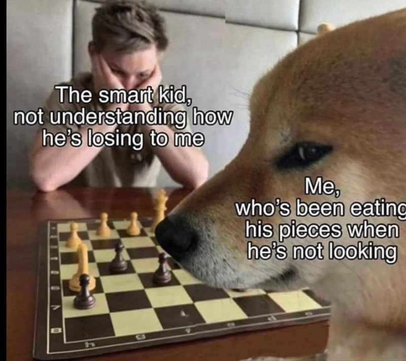 Games - The smart kid, not understanding how he's losing to me Me, who's been eating his pieces when he's not looking
