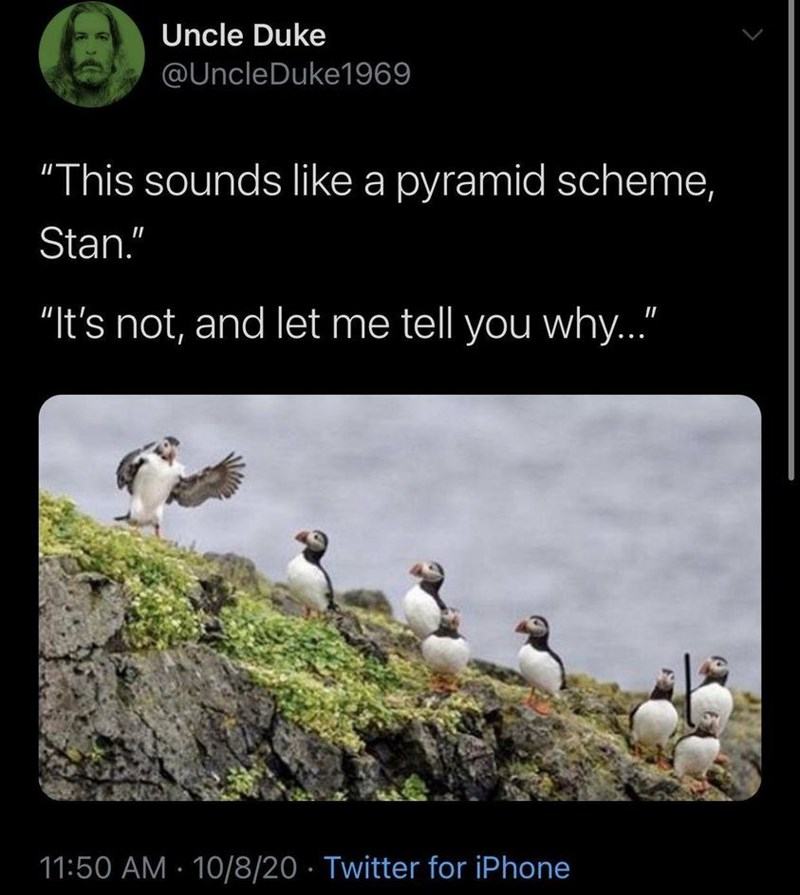 """Bird - Uncle Duke @UncleDuke1969 """"This sounds like a pyramid scheme, Stan."""" """"It's not, and let me tell you why..."""" 11:50 AM · 10/8/20 · Twitter for iPhone"""