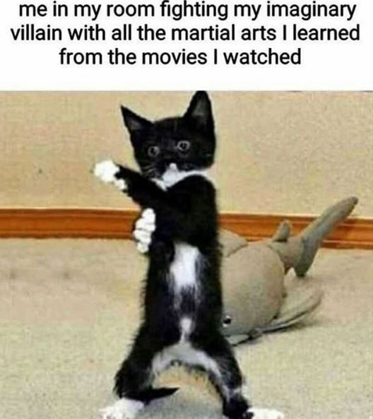 Cat - me in my room fighting my imaginary villain with all the martial arts I learned from the movies I watched