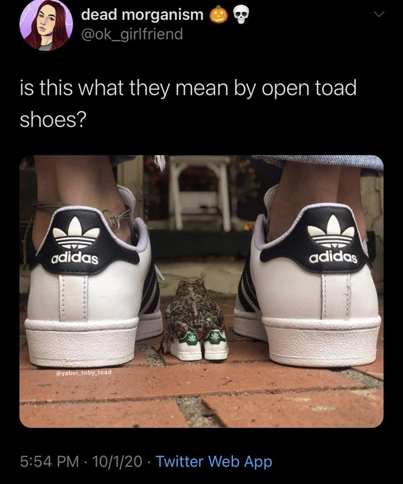 Footwear - dead morganism @ok_girlfriend is this what they mean by open toad shoes? adidas adidas @yaboi_toby_toad 5:54 PM · 10/1/20 · Twitter Web App