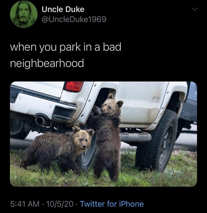 Wildlife - Uncle Duke @UncleDuke1969 when you park in a bad neighbearhood 5:41 AM · 10/5/20 · Twitter for iPhone