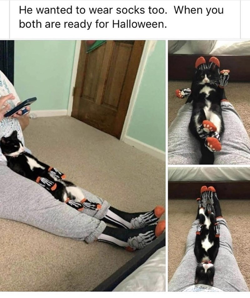 Footwear - He wanted to wear socks too. When you both are ready for Halloween.